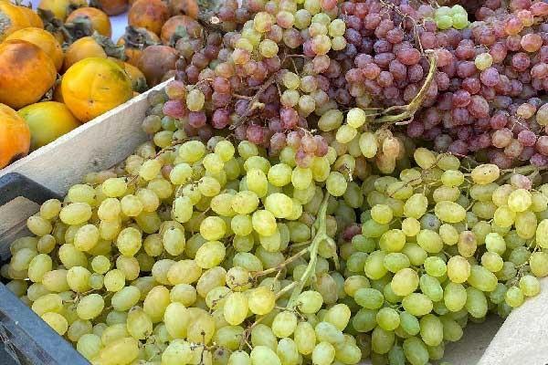Виноград на рынке Дар-Гора